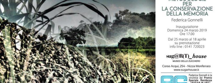 Federica Gonnelli Metodologie per la conservazione della Memoria Sugar in Art
