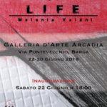 Melania Vaiani mostra Barga Galleria Arte Arcadia