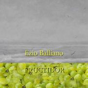 Ezio Balliano Fructidor 2019 Il Melograno Art Gallery
