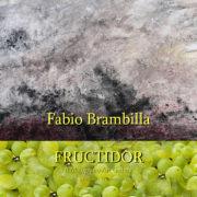 Fabio Brambilla Fructidor 2019 Il Melograno art Gallery