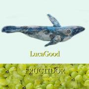 LucaGood Fructidor 2019 Il Melograno art Gallery