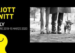 Elliott Erwitt. Family - Mudec - Milano