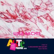 Lidia Bachis Arte Padova 2019 Il Melograno Art Gallery
