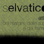 Selvatico 14 Cotignola - Museo Civico Luigi Varoli
