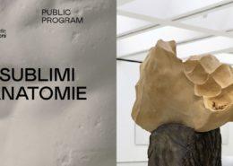 Giuseppe Penone Avvolgere la terra - Palazzo delle Esposizioni - Roma