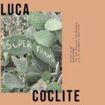 Luca Coclite - Supertrama - Marktstudio - Bologna