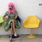 Paola Banfi Sacconi - Vero Falso Vero - Sinestetica - Roma