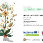 Herbarium Vagans Domodossola agosto 2020