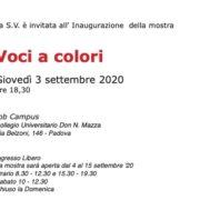 Voci a Colori - La Palestra dell_Arte - Padova